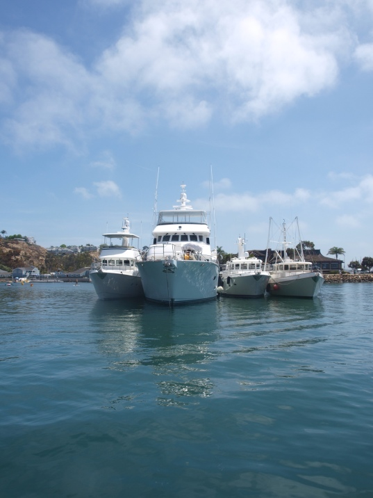 Sockeye Blue at the Nordhavn 2014 rally in Danna Point CA USA,  HQ